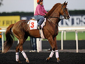 Dullahan at the track in Meydan.