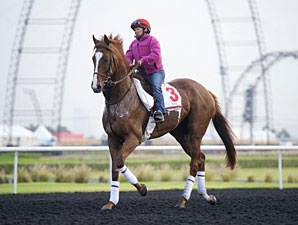 Dullahan - Dubai, March 26, 2013