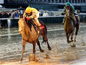 Dundalk Dust wins the 2010 Falls City Handicap.