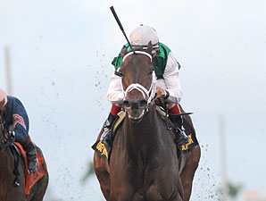Dust and Diamonds wins the 2012 Sugar Swirl.