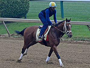 Dynamic Impact at Pimlico May 15.