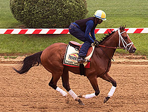 Dynamic Impact - Pimlico, May 15, 2014.