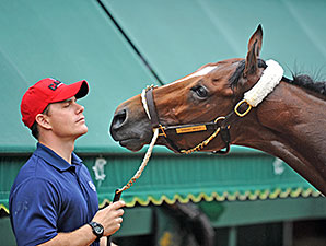Dynamic Impact - Pimlico, May 15, 2014