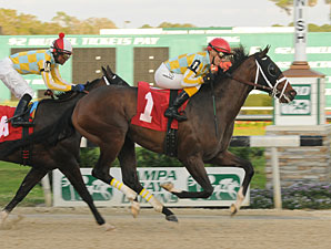 Dynamic Sky wins the 2013 Pasco Stakes.