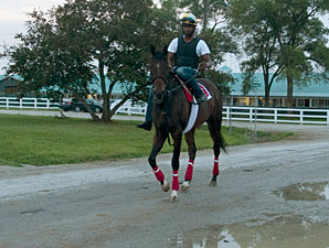 Dynamic Sky - Woodbine, July 6, 2013.