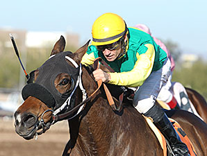 E Z Kitty wins the 2014 Kachina Handicap.