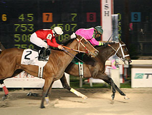 Eccentric Girl wins the 2010 Premier Night Ladies Starter.