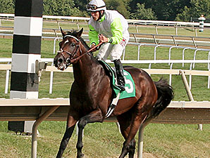 Edge of Reality wins the 2014 Alphabet Soup.