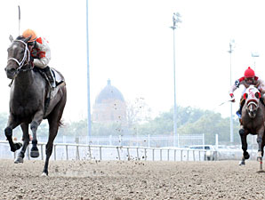 Effie wins the 2011 Louisiana Futurity - Filly Division.