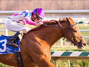 Eighttofasttocatch wins the 2011 Jennings Handicap.