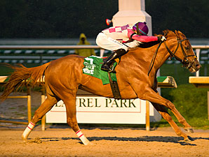 Eighttofasttocatch wins the 2011 Maryland Million Classic.