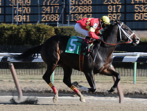 Eightyfiveinafifty breaks his maiden by 17 1/4 lengths on January 9, 2010.