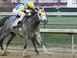 El Grayling finishes 2nd in Churchill ALW 11/27/10.