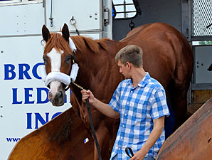 El Padrino arrives at Churchill Downs on May 1, 2012.