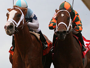 El Padrino wins the 2012 Risen Star.