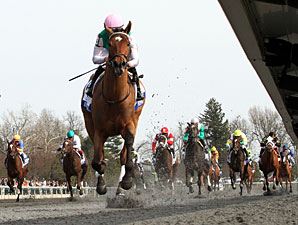 Emollient  wins the 2013 Ashland Stakes.