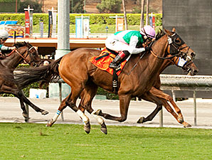Emollient wins the 2014 Rodeo Drive.