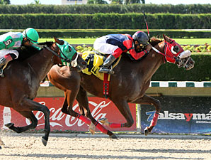 Empire Builder wins the 2012 Mambo Meister.