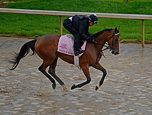 Empress of Midway - Churchill Downs, April 28, 2014