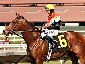 Enterprising wins the 2014 La Jolla Stakes.