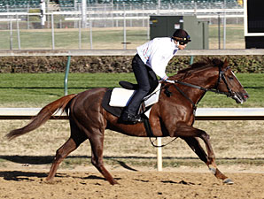 Espoir City at Churchill Downs on October 21, 2010.