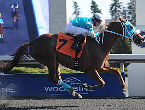 Essence Hit Man wins the 2012 Jacques Cartier Stakes.