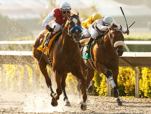 Euroears wins the 2011 Bing Crosby.