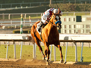 Euroears wins the 2011 Palos Verdes.