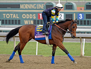 Executiveprivilege - Breeders' Cup 2012.