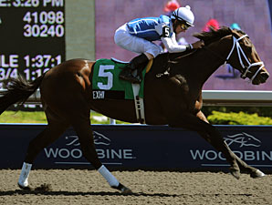 Exhi wins the 2010 Marine Stakes.