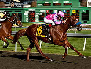 Exit Stage Left wins the 2013 Gold Rush Stakes.