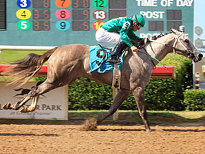 Falling Star wins the 2012 TTA Sales Futurity.