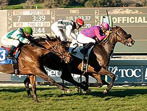 Fanticola wins the 2015 Megahertz Stakes.