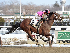 Far From Over Profile News Entries Results Video And Blogs Bloodhorse Com