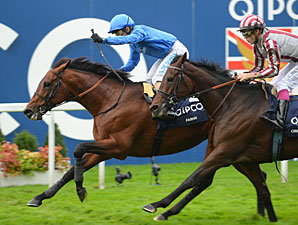 Farhh wins the 2013 Qipco Champion Stakes.