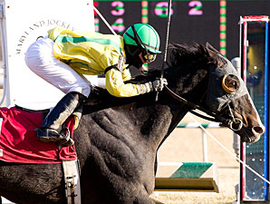 Fascinatin' Rhythm wins the 2011 Conniver Stakes.