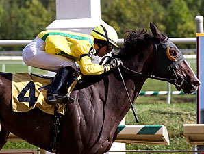 Fascinatin' Rhythm wins the 2010 Geisha Stakes.