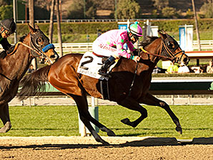 Fashion Plate wins the 2014 Las Virgenes.