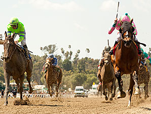 Fashion Plate wins the 2014 Santa Anita Oaks.