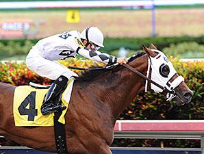 Fast Anna - Allowance Win, July 6, 2014.