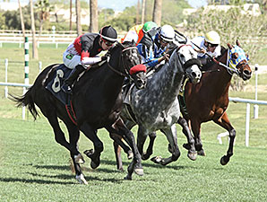 Fast Track - New Course Record, Turf Paradise, March 18, 2014.