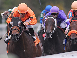 Fatal Bullet wins the 2009 Phoenix.