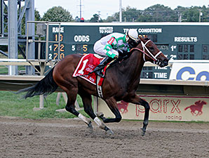 Favorite Tale wins the 2014 Gallant Bob Stakes.