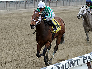 Favorite Tale wins the 2014 Gold Fever Stakes.