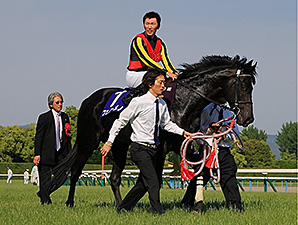Fenomeno  wins the Tenno Sho Spring Stakes.