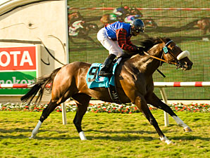 Ferneley wins the 2009 Del Mar Mile