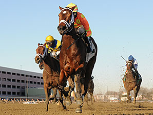 Fierce Boots wins the 2014 Busanda Stakes.
