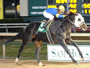 Fifteen Love wins the 2010 Maxxam Gold Cup.
