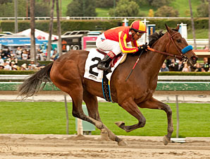 Fiftyshadesofhay wins the 2013 Santa Ysabel.