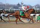 "Final Chapter<br /><a target=""blank"" href=""http://photos.bloodhorse.com/AtTheRaces-1/At-the-Races-2015/i-LsK72sM"">Order This Photo</a>"